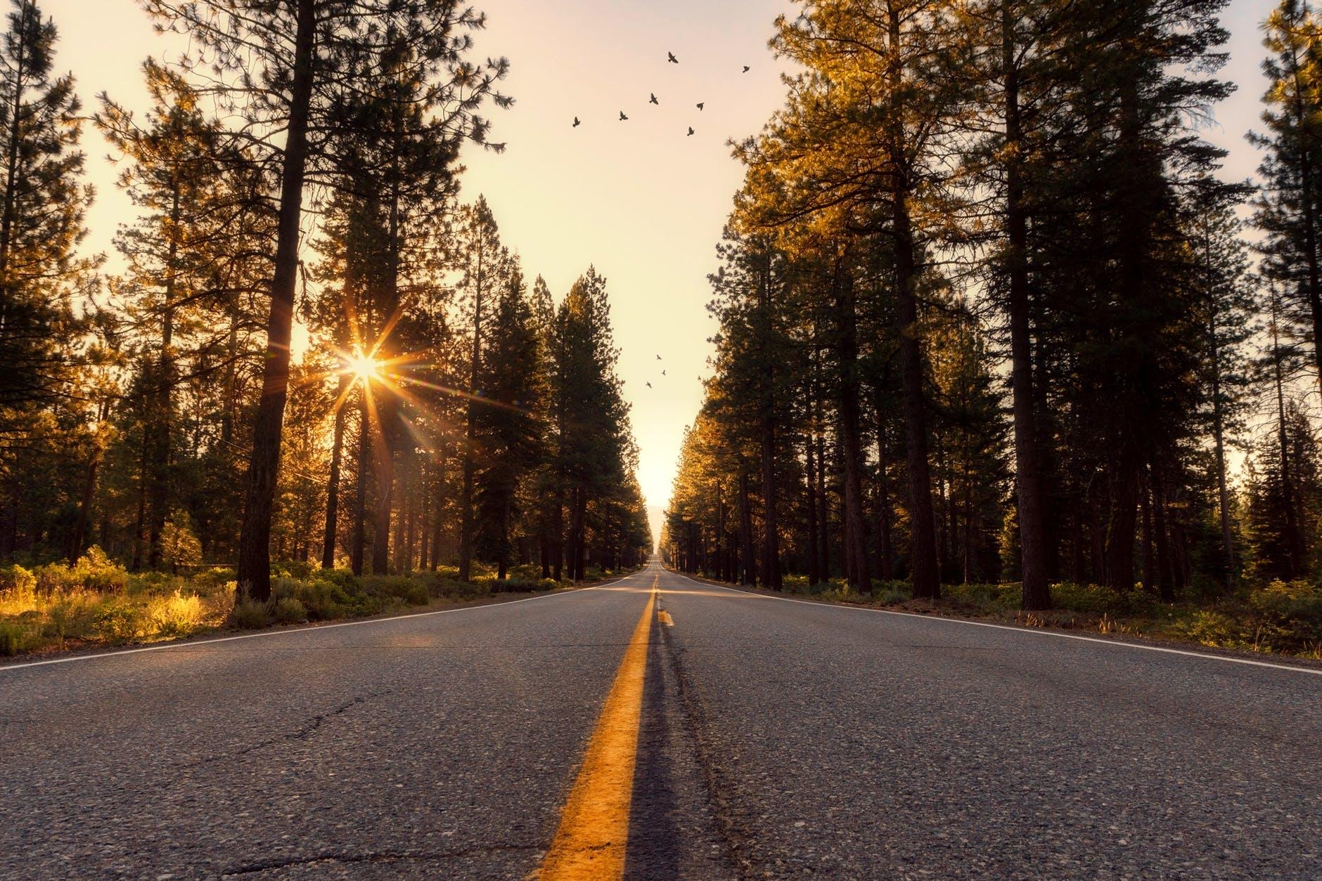 adventure asphalt california country