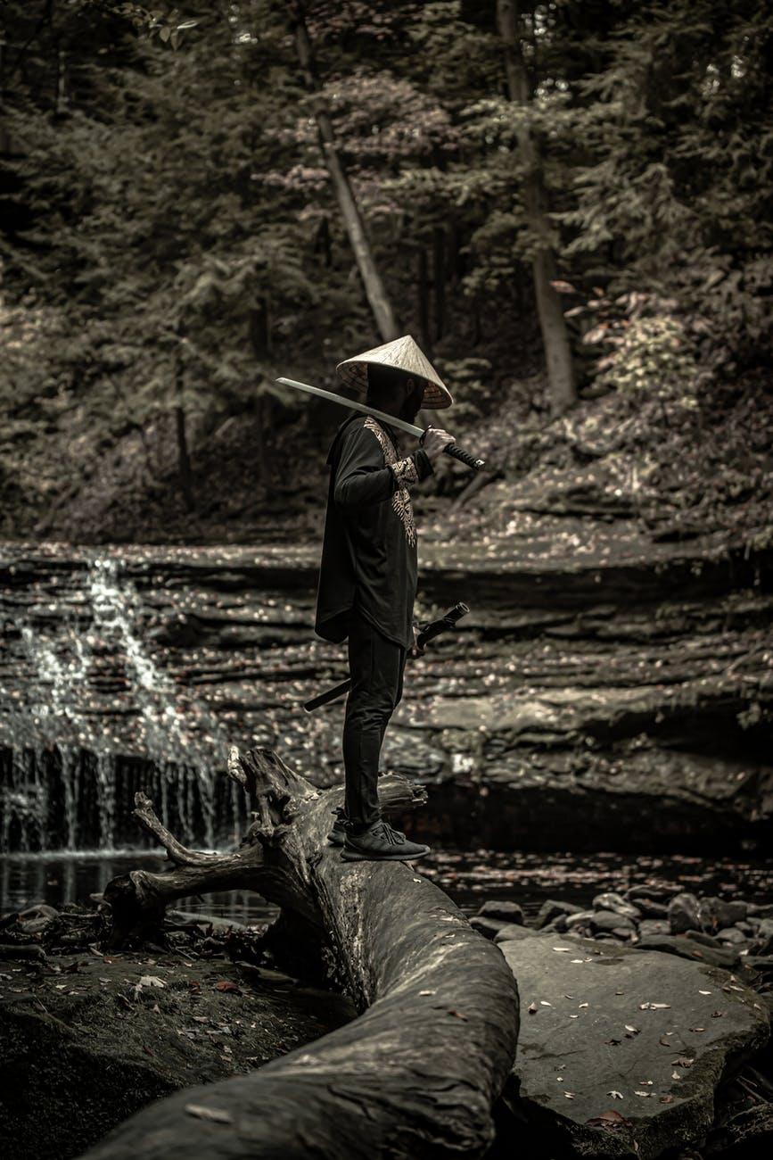 samurai standing on a log